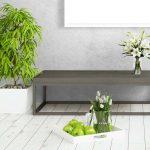 Ideas para decorar con plantas nuestro hogar