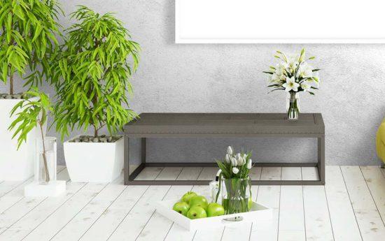 Decorar nuestro hogar con plantas