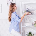 Tipos de cactus sin espinas: Ideales para el interior de casa