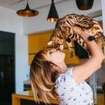 Qué Hacer Cuando un Gato se Mea en Casa