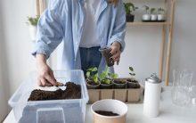 Como hacer un jardín vertical en casa
