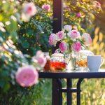Plantas de exterior resistentes para terrazas con flor: construye tu jardín en casa